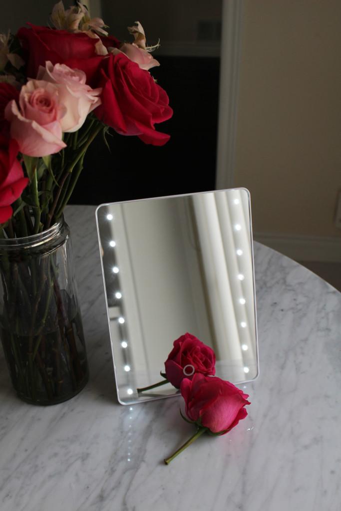 Dreams of Velvet - Sharper Image LED Mirror 2